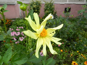 http://img-fotki.yandex.ru/get/3305/184459687.27/0_10d055_e1d0966d_M.jpg