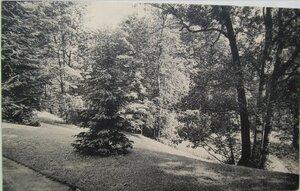 У могилы герцога Г. Г. Мекленбург-Стрелицкого