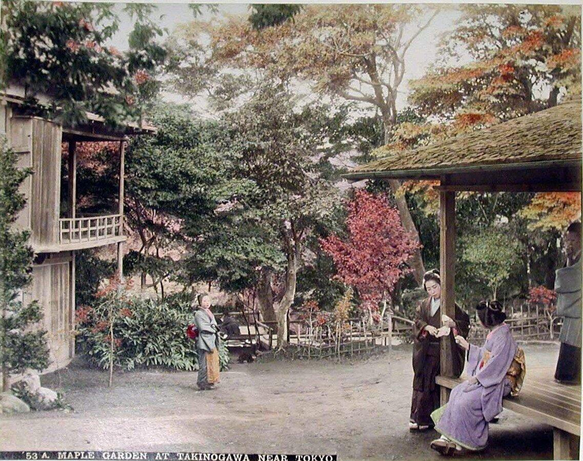 Окрестности Токио. Кленовый сад на Такиногава