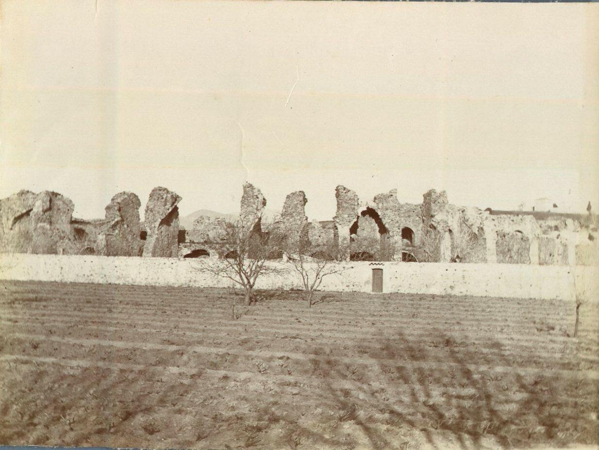 Амфитеатр. 1900