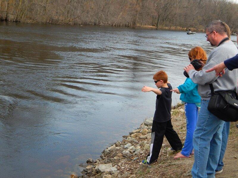 В поисках большой рыбы.