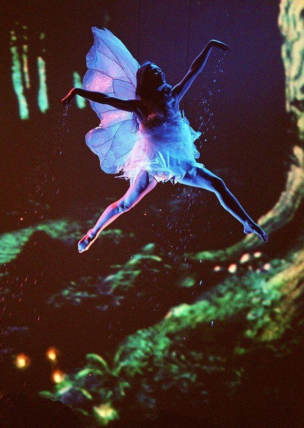 5. В 1999 году летающая фея обсыпала публику волшебной пыльцой (предположительно).