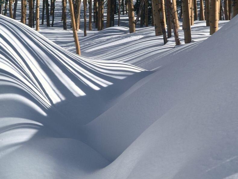 Красивые фотографии зимы зимний лес поля.