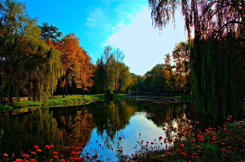 пруд в парке им. Шевченко