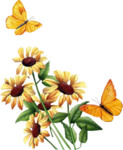 flower_25.png