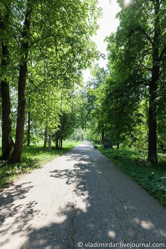 Аллея в парке усадьбы Горки