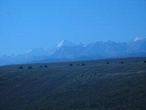 Большой Кавказ с дороги в Нальчик