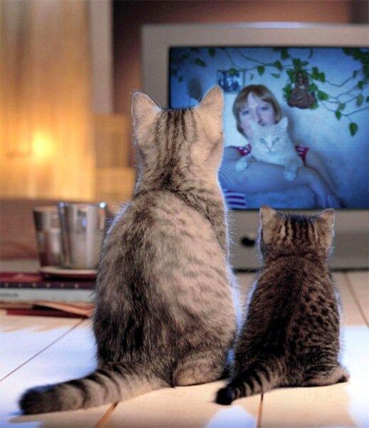 Кино про сладкую жизнь...