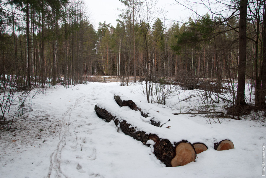 количество снега в апрельском лесу в нижегородской области
