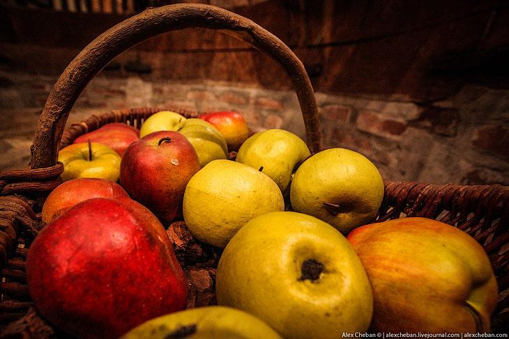 Фотографии и текст Александра Чебана   Сейчас я расскажу про самый известный в мире яблочный