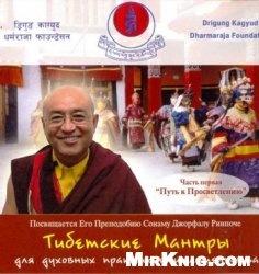 Книга Тибетские мантры для духовных практик и целительства