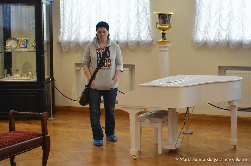День открытых дверей, посвященный Дню рождения А. П. Боголюбова и 130-летию музея, Саратов, 26 марта 2015 года