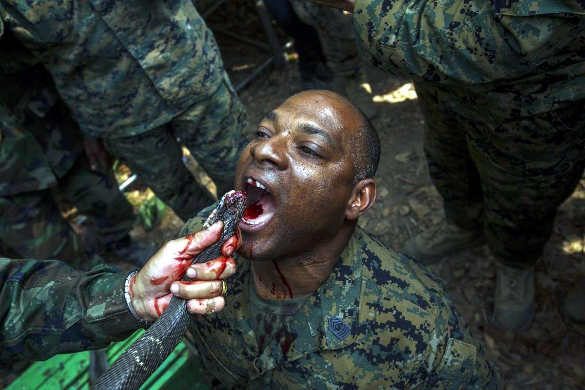 На учебном поле брани: Картинки из жизни бойцов различных спецназов (28)
