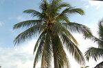 Thailand - Рай на земле