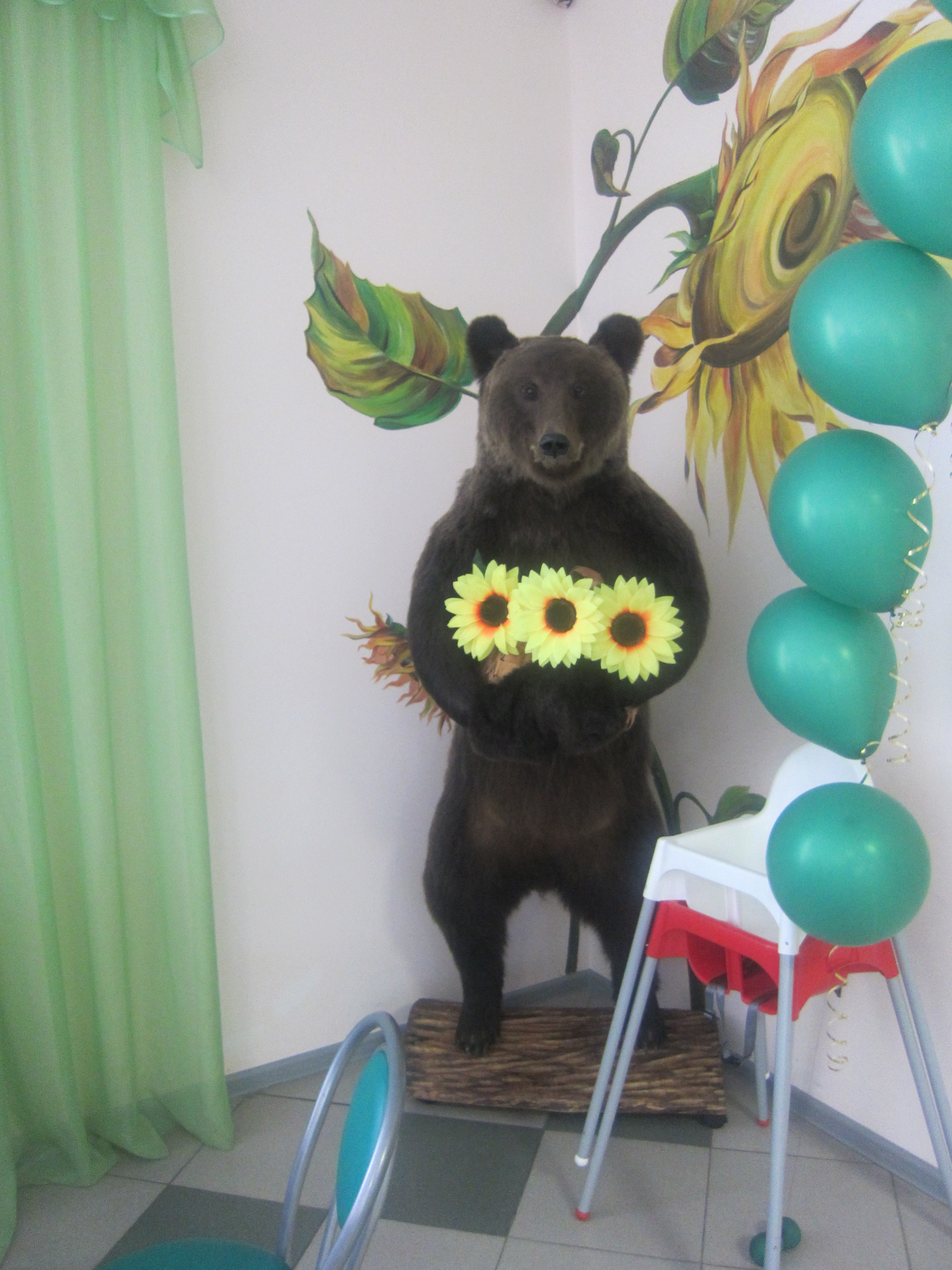 Мать-медведица сбукетиком. Сюр! (25.06.2013)