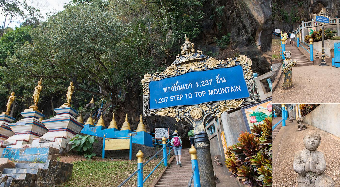 Фотография 8. Сколько ступеней на гору у Храма Тигриной Пещеры? Отчет об экскурсии в Краби во время отдыха в Таиланде (500, 24, 8.0, 1/125)