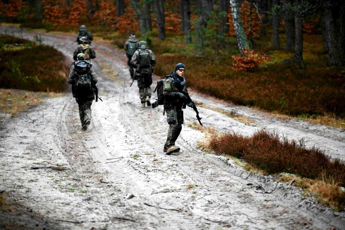 Военизация по-польски: Назло Европе и в угоду Америке (25)