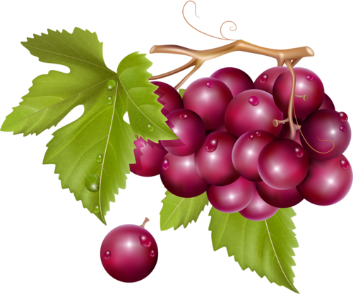 виноград (49).png