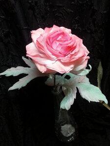 Роза - царица цветов 3 - Страница 2 0_10689f_cd91d42_M