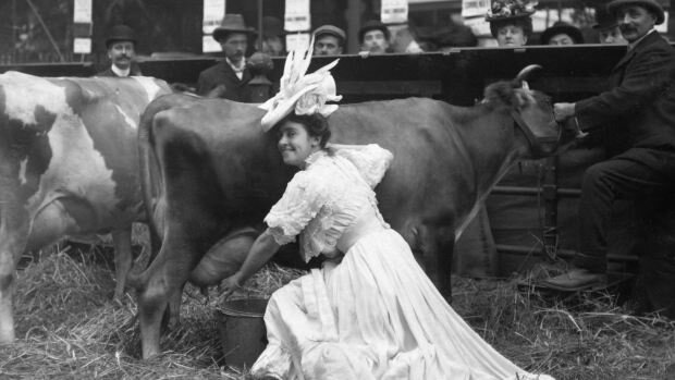 Dairy Maid