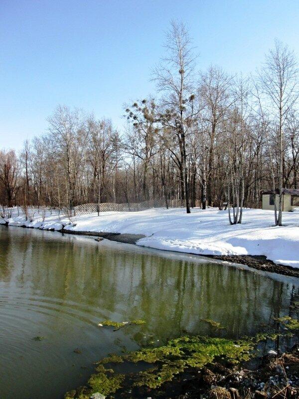 конец марта. лёд и вода
