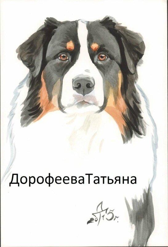 Севенти Севен Кольт - Страница 6 0_1507e1_11d2690_XL