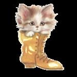 кот в сапоге.png