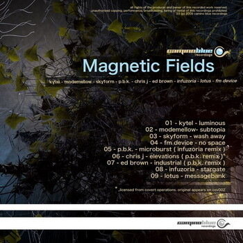 VA - Magnetic Fields (2009)