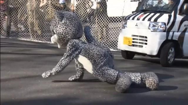 В токийском зоопарке ловили людей в смешных костюмах животных   прошли учения