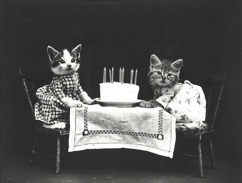 «Торт на день рождения».
