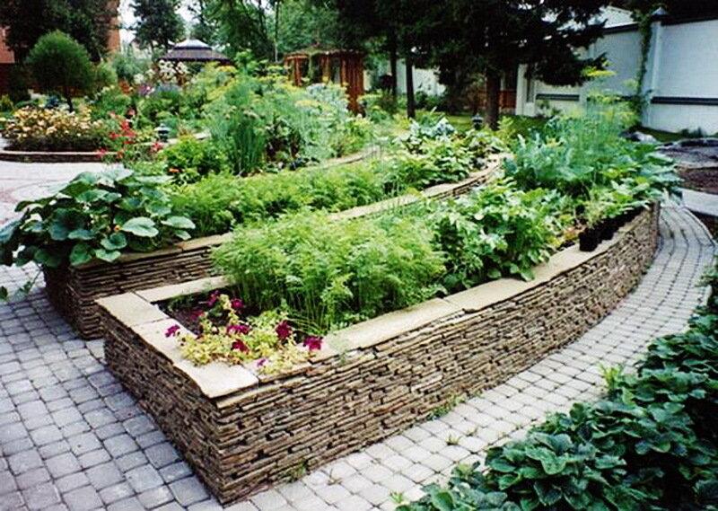 Дизайн огорода и грядок