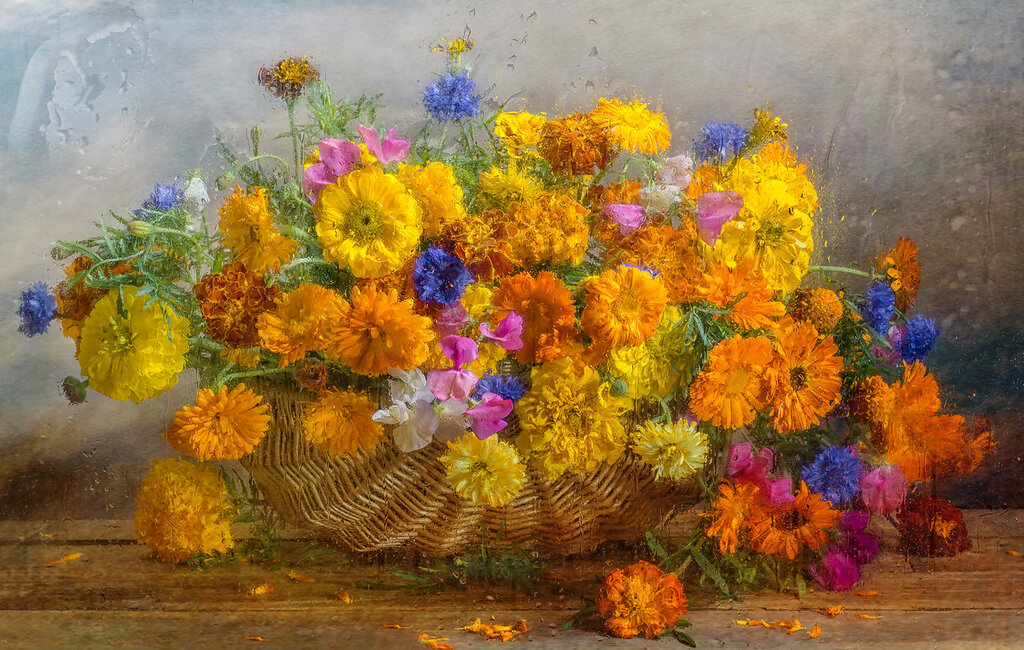 Акварельный мир цветов