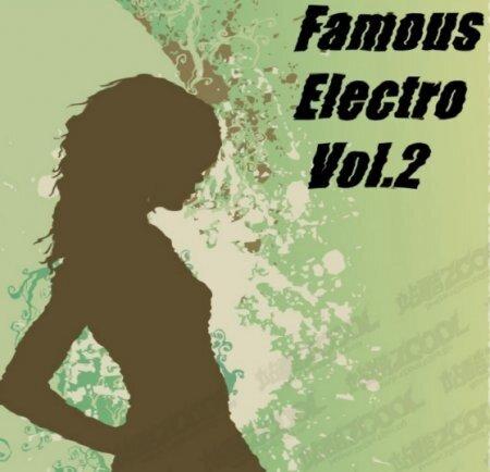 VA-Famous Electrohouse vol.2 (2009)