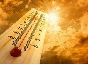 Прошедший август стал самым жарким за последнее 135 лет