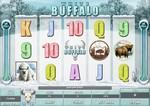 White Buffalo бесплатно, без регистрации от Microgaming