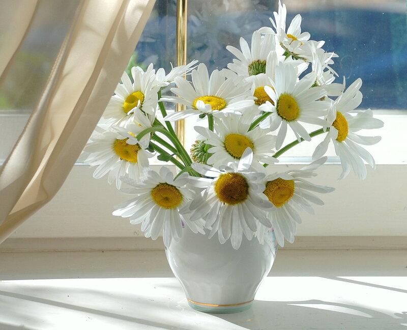http://img-fotki.yandex.ru/get/3314/fom-lidiya.3/0_22a46_e0298b04_XL.jpg
