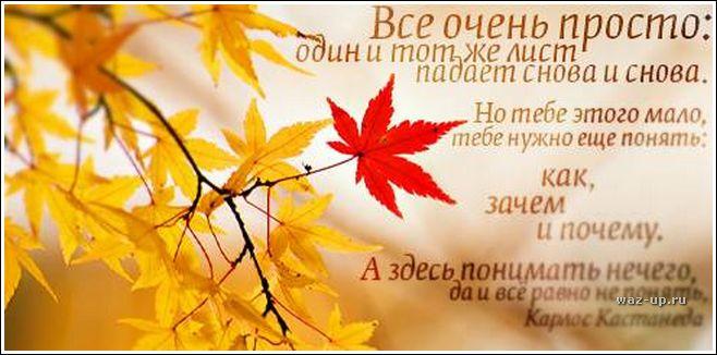 http://img-fotki.yandex.ru/get/3314/lalyo.25/0_7894_d40f93be_orig.jpg