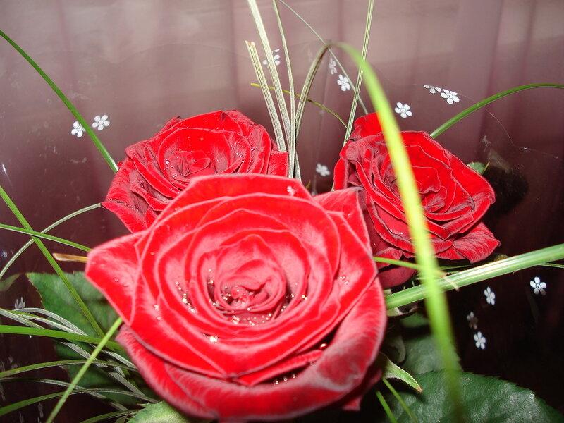 Как загрузить цветка