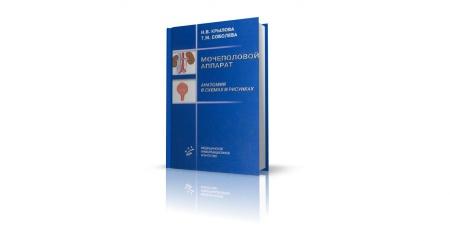 Книга В учебном пособии «Мочеполовой аппарат» (Крылова Н.В., Соболева Т.М., 2004) изложены общие и частные вопросы анатомии мочевых и