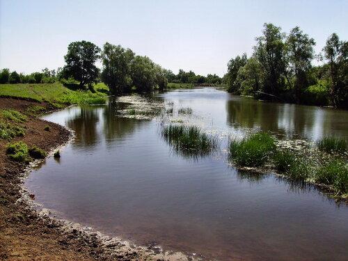 река аря рыбалка