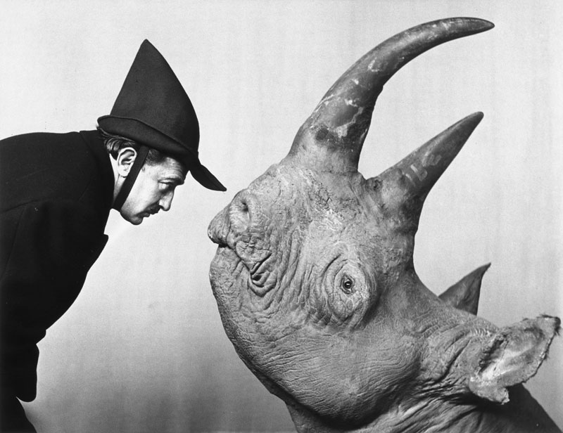 Dali and the Rhino - Photographed by Philippe Halsman (1952)