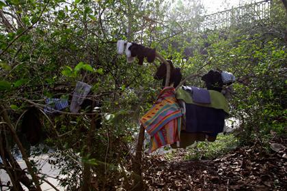 В Лондоне румынские иммигранты выстроили хижины