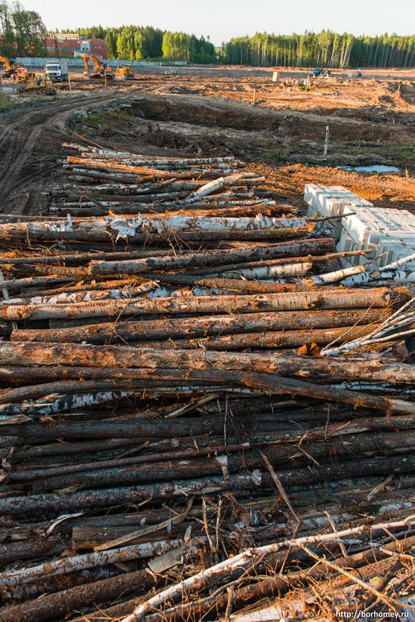 куча древесины