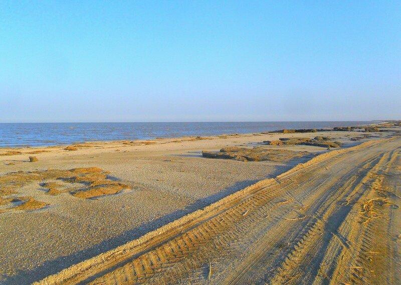 Особенности утреннего берега ... SAM_3854.JPG