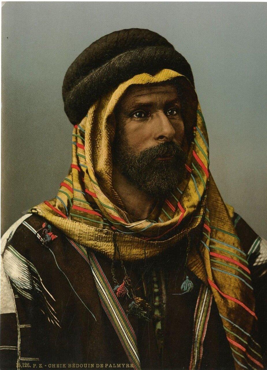 Шейх бедуинов