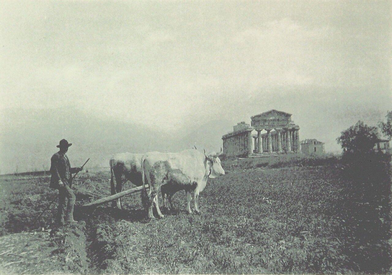 Пестум Храм Цереры.