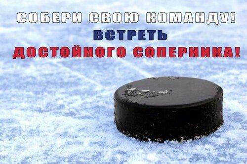 Собери свою хоккейную команду!