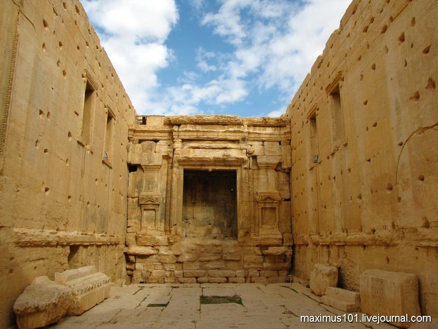 Пальмира - королева пустыни