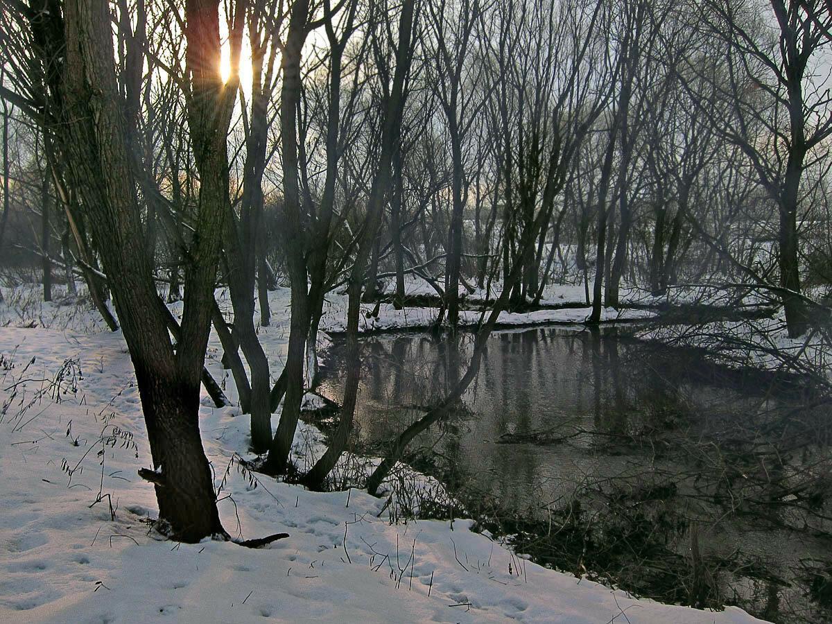 Сукромка. Автор фото: Юрий Семенов