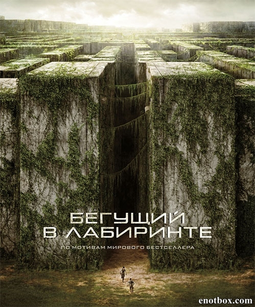 ������� � ��������� / The Maze Runner (2014/Telecine)